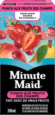 Minute Maid, Berry Punch, 200 mL Tetra Box